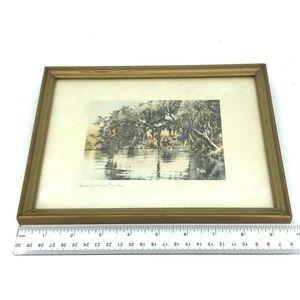 Vintage Wall Art - 30s Framed Watercolor Spanish Moss Florida Print